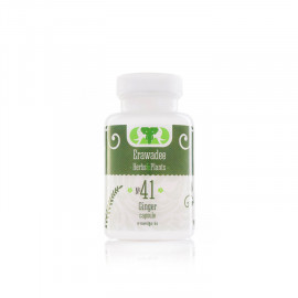 No.41 Khing (Digestion Activation)