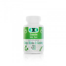 No.31 Ginkgo Biloba and Panax Ginseng