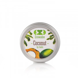 Lip Balm Coconut